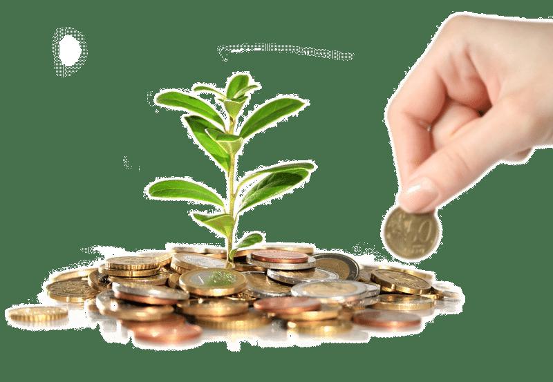 investment كيفية الحصول على تمويل مالي لشركتك الناشئة