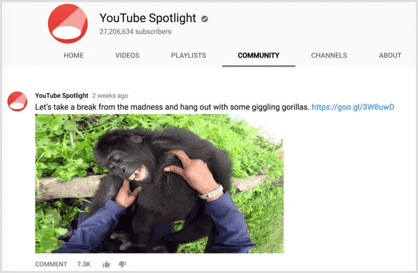 youtube-channel-community-tab-post حل مشكلة مشاهدات يوتيوب باستخدام YouTube Community